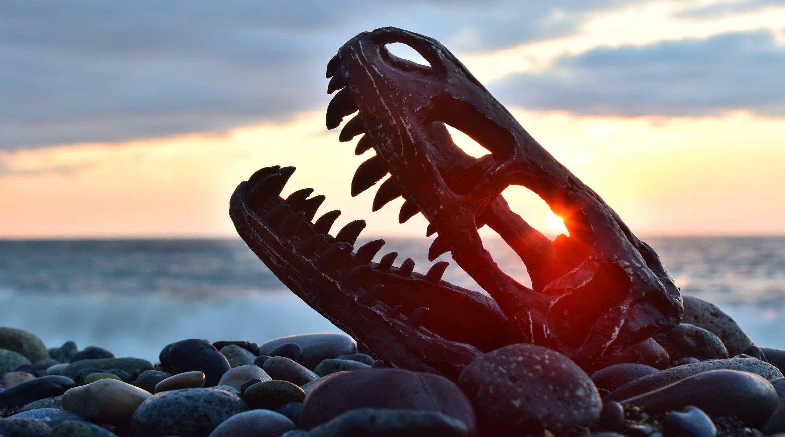 הרב יוני לביא: האם לתורה יש בעיה עם דינוזאורים?