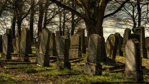 לא למות אף פעם: פרשת חוקת עם הרב חגי לונדין