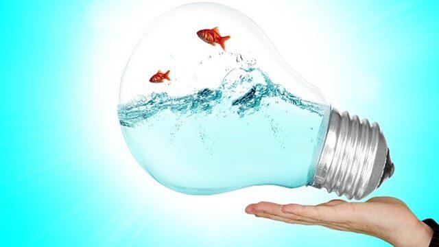 סוגיות בכוחות הנפש – מהו כח הדמיון? הרב אלי גולדברג בשיעורים במשנת הרב קוק