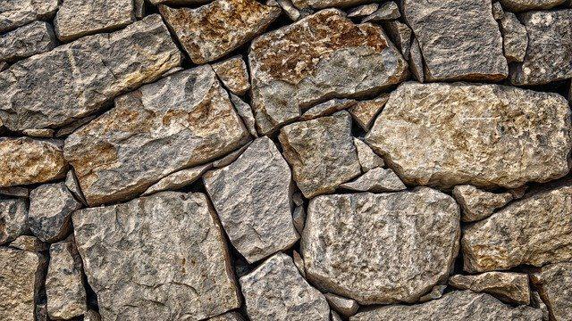 'עצים ואבנים': מאמר מאת הרב זיו רווה לפרשת שלח לך