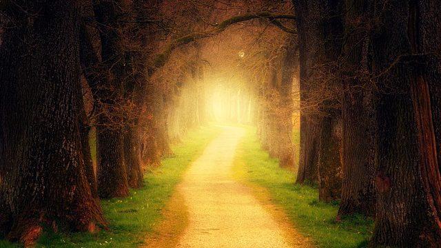הרב קוק ולימוד תורת הסוד – הרב חגי לונדין