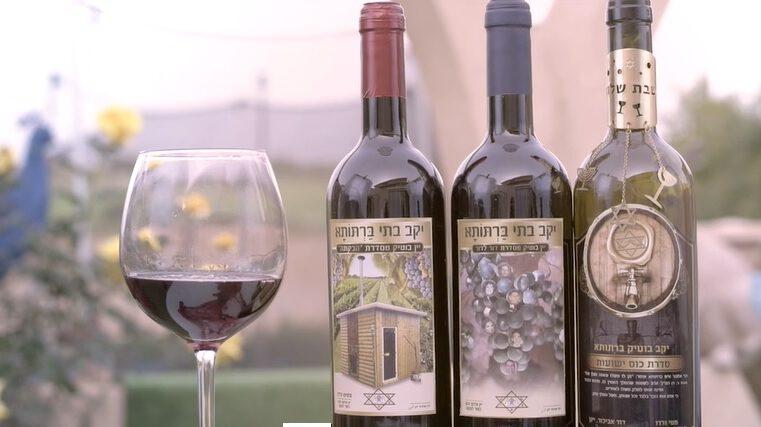 איך מכינים יין באהבה? – 'גוונים' – פרק לפורים