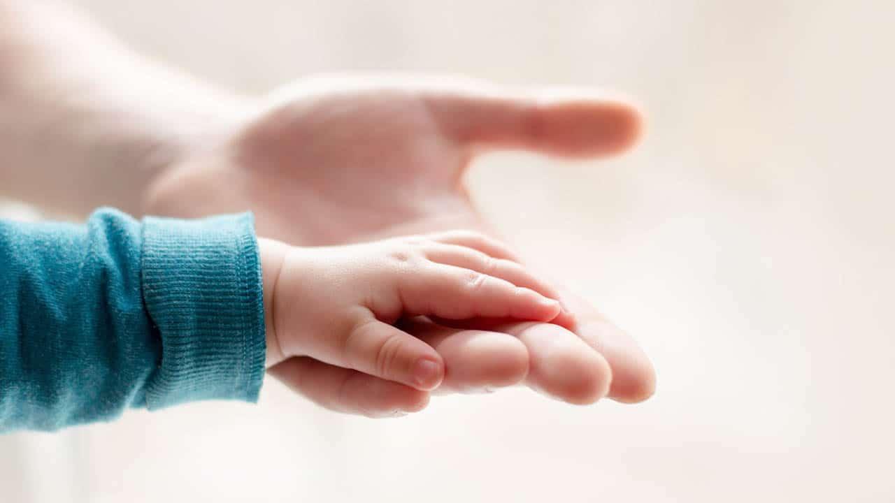לקח מפרשת ויקרא: כך תציל את הילדים שלך