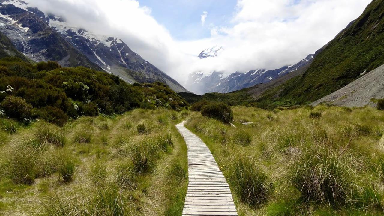 מעמיקים בפרשיות ויקהל פקודי: לצאת למסע כשאתה עדיין בחנייה?