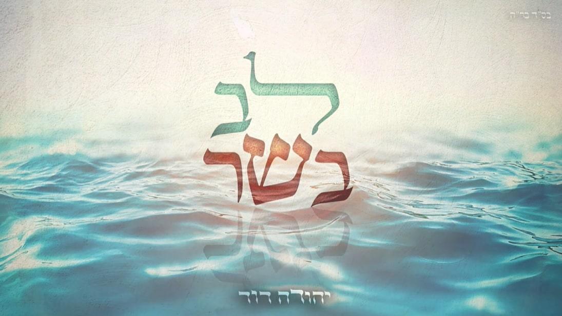 """""""לב בשר"""" – יהודה דוד"""