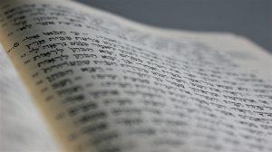 אותיות דרבי עקיבא. – על תחילת דרכו של רבי עקיבא בתורה