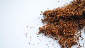 מדוע ה'חוזה מלובלין' היה שואף טבק באמצע התפילה? הרב אייל ורד